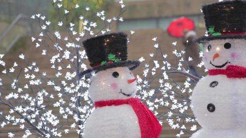 Snowmen pan wearing red scarfs in front of douglas Footage