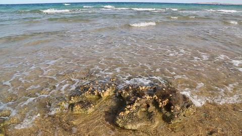 sea waves on Red sea Footage