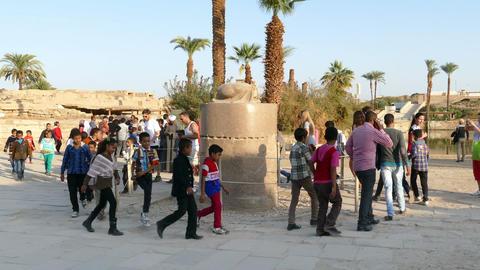 Tourists walk around scarab beetle in Karnak Footage
