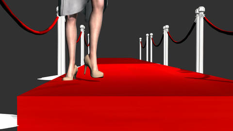 Attractive Legs Walking Down a Cat Walk Animation
