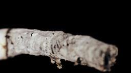 Extreme Close Up Cigarette Burning Inhalation stock footage