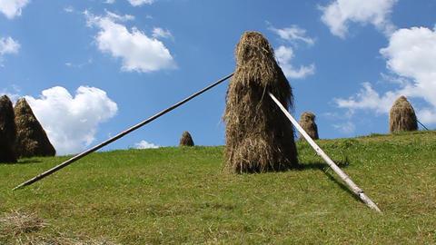 Haystacks Footage