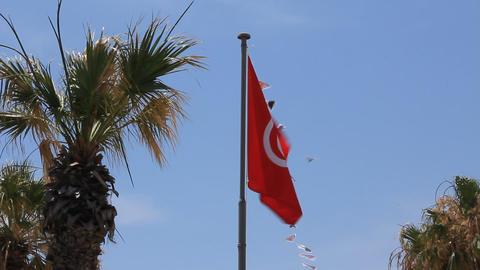 National flag of Tunisia Live Action