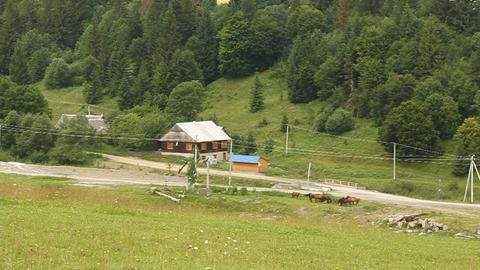 House in Carpathian Mountains Footage