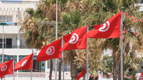 National flags of Tunisia Live Action