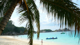 Paradise Beach stock footage