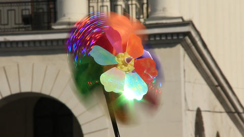Multicoloured propeller Live Action