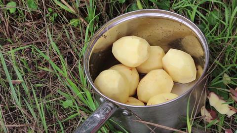 Saucepan with potatoes Footage