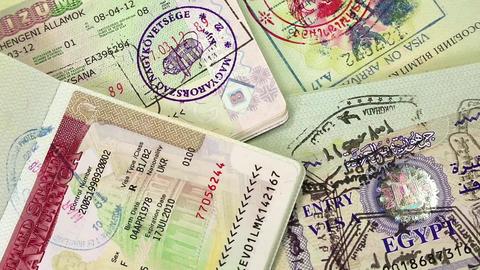 International passports with visas ビデオ
