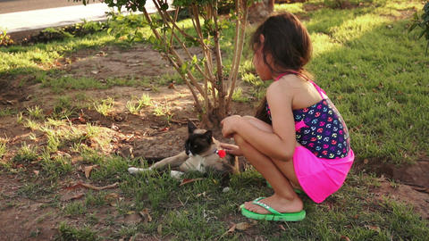 Little Girl Petting Cat Outside stock footage