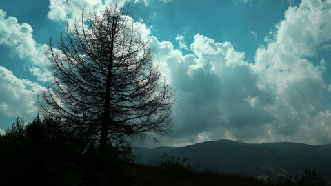 Time lapse of clouds and dead tree in mountains Footage