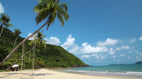 Palms on the beach of beautiful island Footage