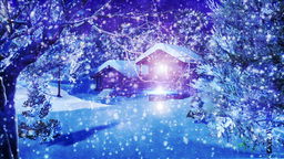 Christmas Snowy Scene dolly 02 snowing Stock Video Footage