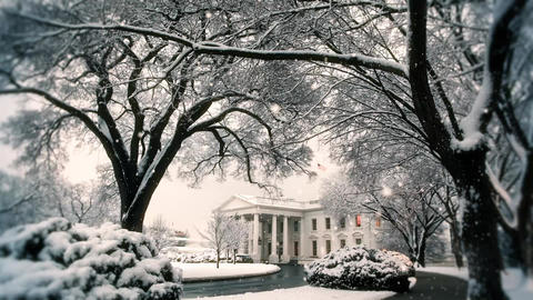 white house winter Stock Video Footage