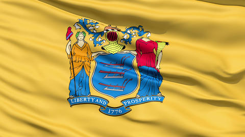 Waving Flag Of The US State of New Jersey Stock Video Footage