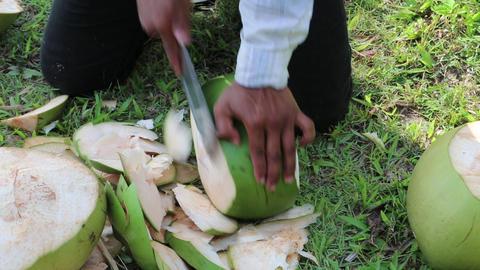Man peels a big green coconut Live Action