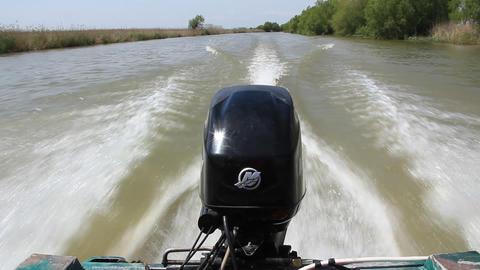 Boat engine Live Action