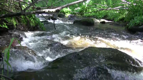 Overflowing Water through Boulder Footage