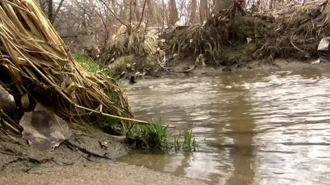 (Seamless Loop) Sandy Shallow Barren Creek Shot As Footage