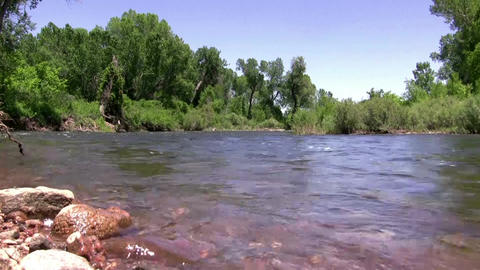 (Seamless Loop) Flowing Downstream River Green For stock footage
