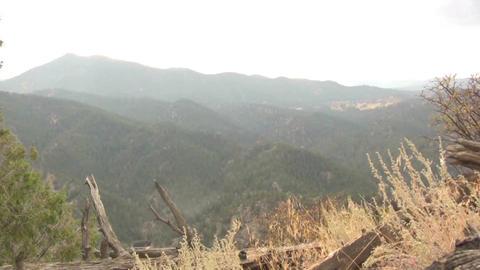 (Seamless Loop) Hilly Vista Grasses Waving In Wind stock footage