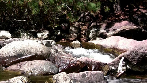 (Seamless Loop) Boulder Mountain Creek. Profession Live Action