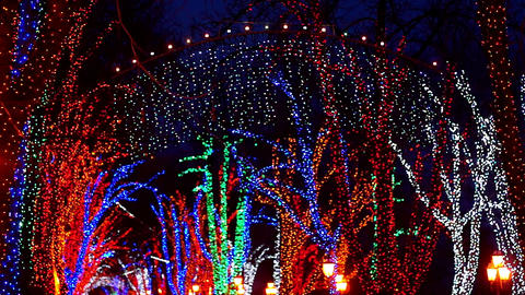 Festive Street Illuminated Garlands Footage
