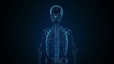 Human Skeleton in Sci fi blue interface Footage