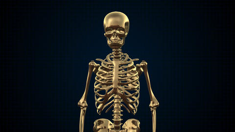 Metal Cyber Human Skeleton Gold stock footage