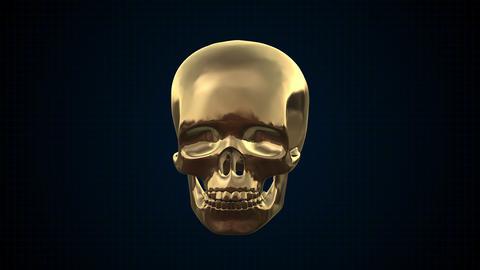 Metal Cyber Human skull Gold Footage