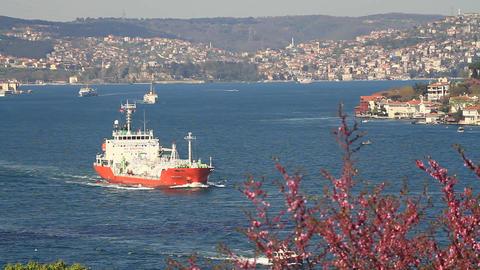Bosphorus In Springtime stock footage