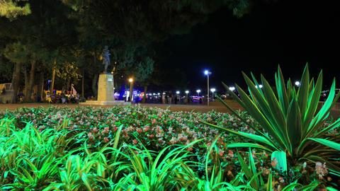 Gelendzhik city night slider timelapse 4K Footage