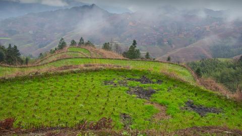 Rice terraces in Dazai village slider timelapse 01 Footage