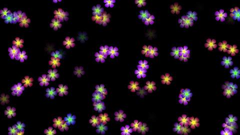4k Color flower petal nature neon pattern&Colorful array matrix background ビデオ