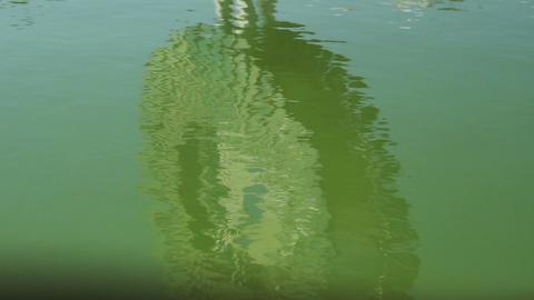 Green Water Waving Footage