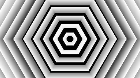 brights hexa stripe with alpha matte Animation