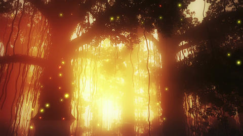 Mysterious Deep Jungle Fireflies in Water 2 Stock Video Footage
