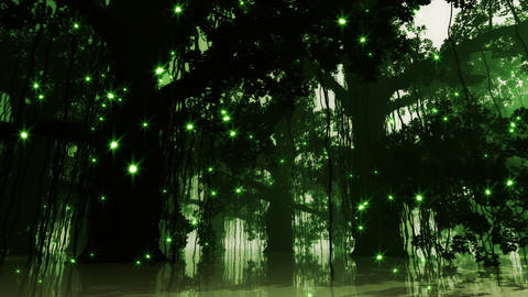 Mysterious Deep Jungle Fireflies in Water at Night Animation