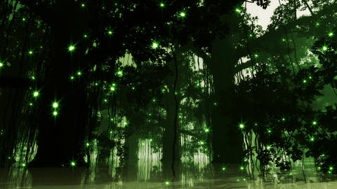 Mysterious Deep Jungle Fireflies in Water at Night Stock Video Footage