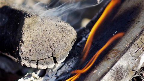 Campfire closeup Stock Video Footage