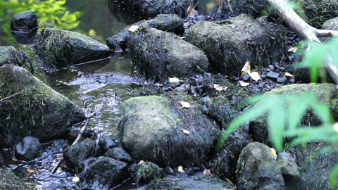 Mountain stream with boulders Stock Video Footage