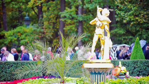 Golden fountain in Petergof neat Sain Petersburg,  Footage