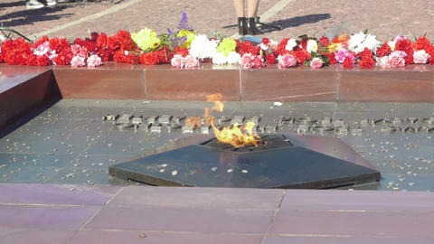 Coins thrown to Eternal Flame monument to Unknown Stock Video Footage