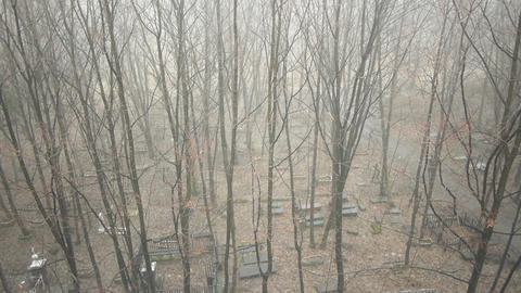 View on old cemetery at autumn day, moving camera Stock Video Footage