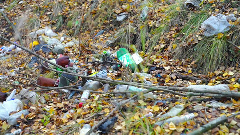 Garbage on forest glade at autumn day Stock Video Footage