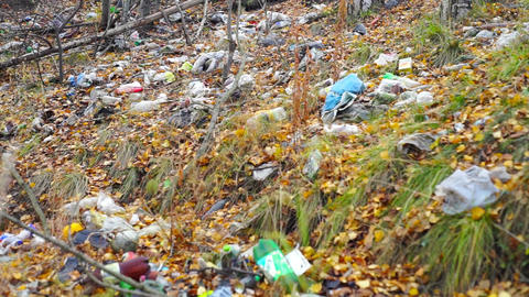 Bottles, plastic bags and other garbage in forest Footage