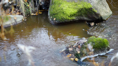 Mossy rocks in forest river close up Stock Video Footage