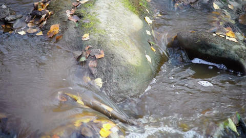 Narrow river with mossy rocks Stock Video Footage