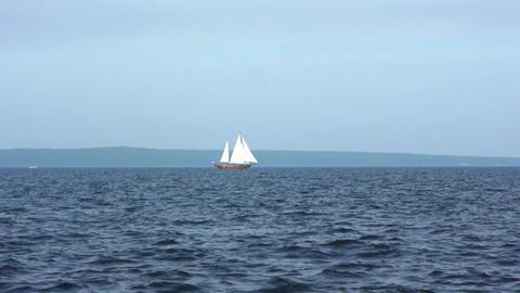 Sailboat in regatta on blue sea Stock Video Footage