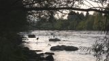 Mountain River - Nat. Sound stock footage